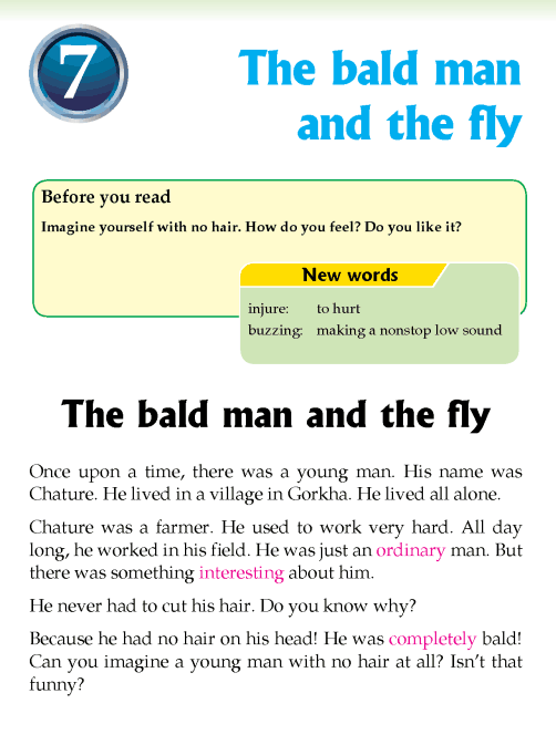 Literature Grade 3 Fables and folktales The bald man and the fly