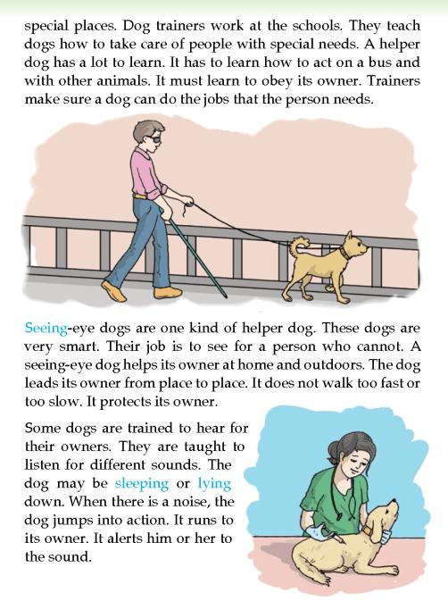 literature-grade 3-Non-fiction-Dogs that help (2)