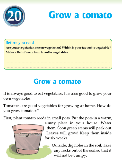 literature Grade 3 Non-fiction Grow a tomato