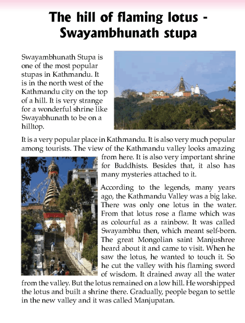 literature- grade 5-Nepal special-swayambhunath stupa (2)