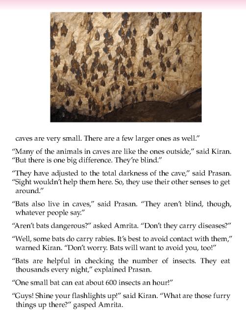 literature- grade 5- nonfiction-A trip to Mahendra Cave (4)