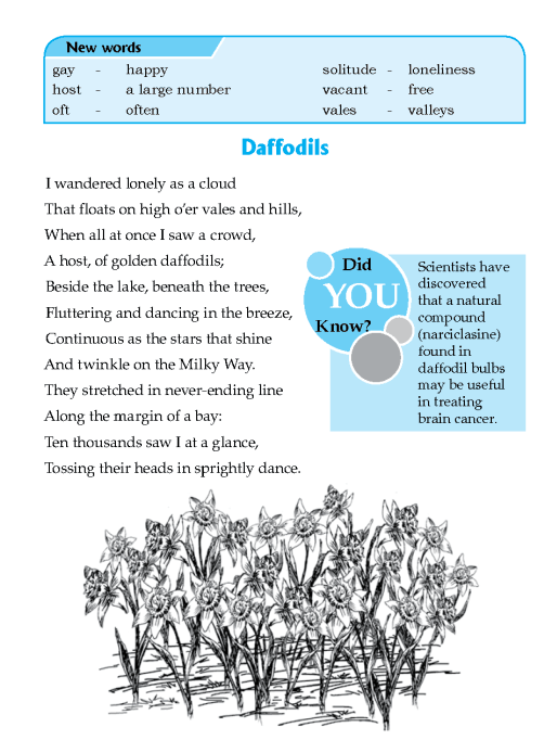 literature-grade 6-Poetry-Daffodils (2)