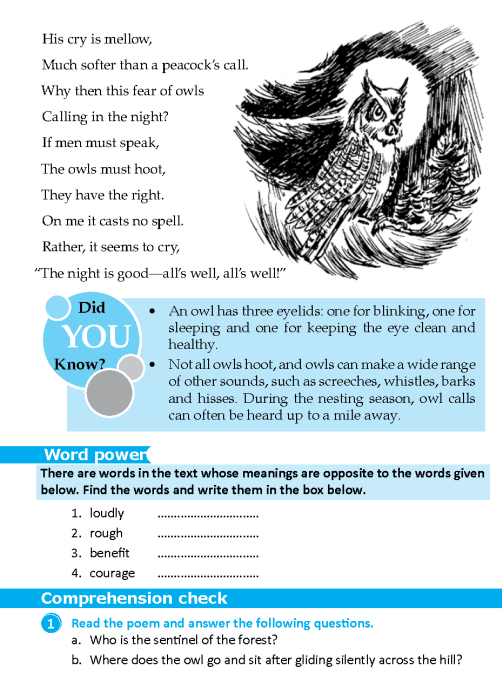 literature-grade 6-Poetry-The owl (2)