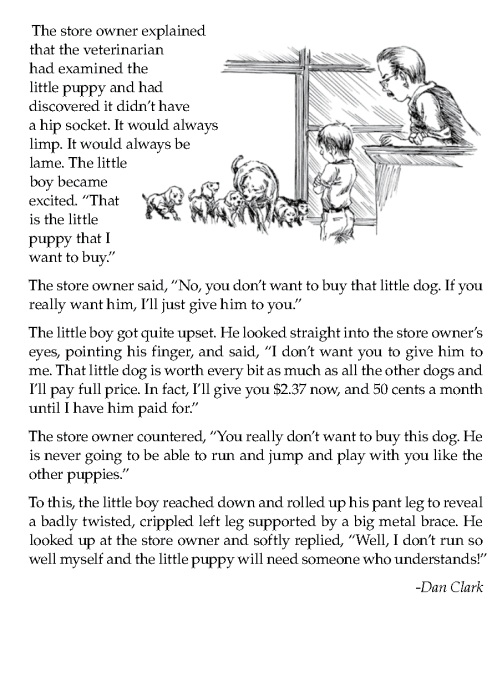 literature-grade 7-Inspirational-Puppies for sale (2)