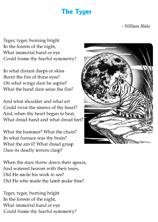 literature-grade 8-Poetry-The Tyger (2)